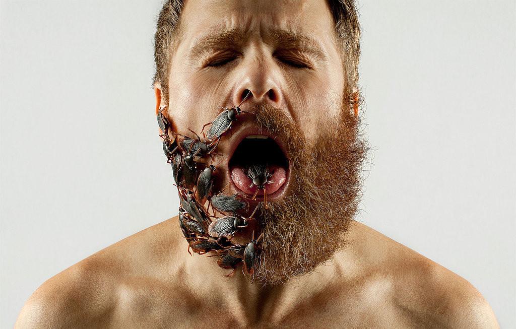 Mity o brodzie